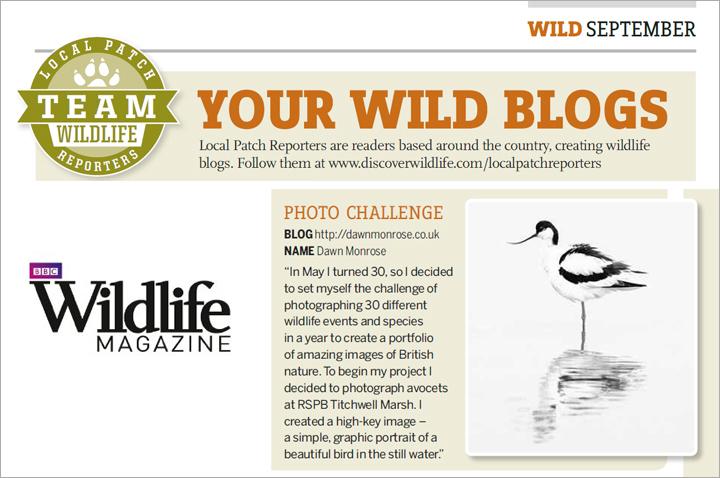 BBC-Wildlife-mag-2014
